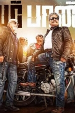 power-paandi-movie-posters-pooja-stills-004