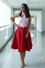 actress-raashi-khanna-stills-047