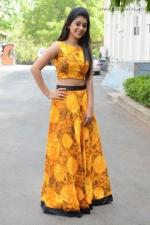 telugu-actress-yamini-bhaskar-stills-006