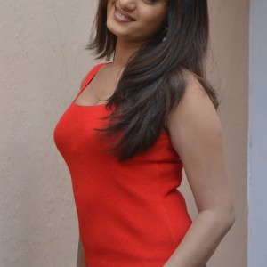 actress-lavanya-in-res-dress-stills-009