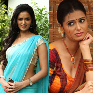 Actress Meenakshi Dixit Photos