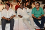 brother-of-bommali-audio-launch-stills-008
