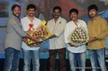 brother-of-bommali-audio-launch-stills-029