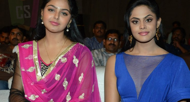 Brother of Bommali Audio Launch Stills