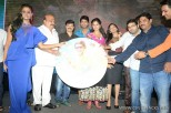 brother-of-bommali-audio-launch-stills-051