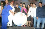 brother-of-bommali-audio-launch-stills-052