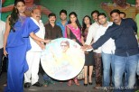 brother-of-bommali-audio-launch-stills-053