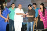 brother-of-bommali-audio-launch-stills-054