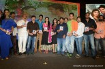 brother-of-bommali-audio-launch-stills-056