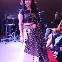 chennai fashion week photos 016