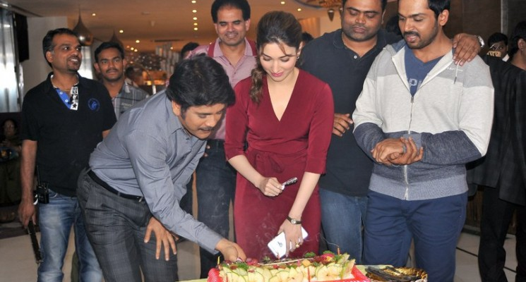 Tamannah Birthday Celebration Stills