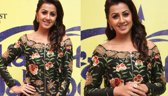 Hara Hara Mahadevaki Audio Launch Photos