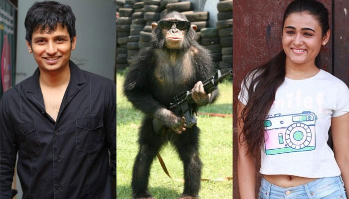 சிம்பன்சீயுடன் நடிகர் ஜீவா- ஷாலினி பாண்டே நடிக்கும் புதிய படம் 'கொரில்லா'!