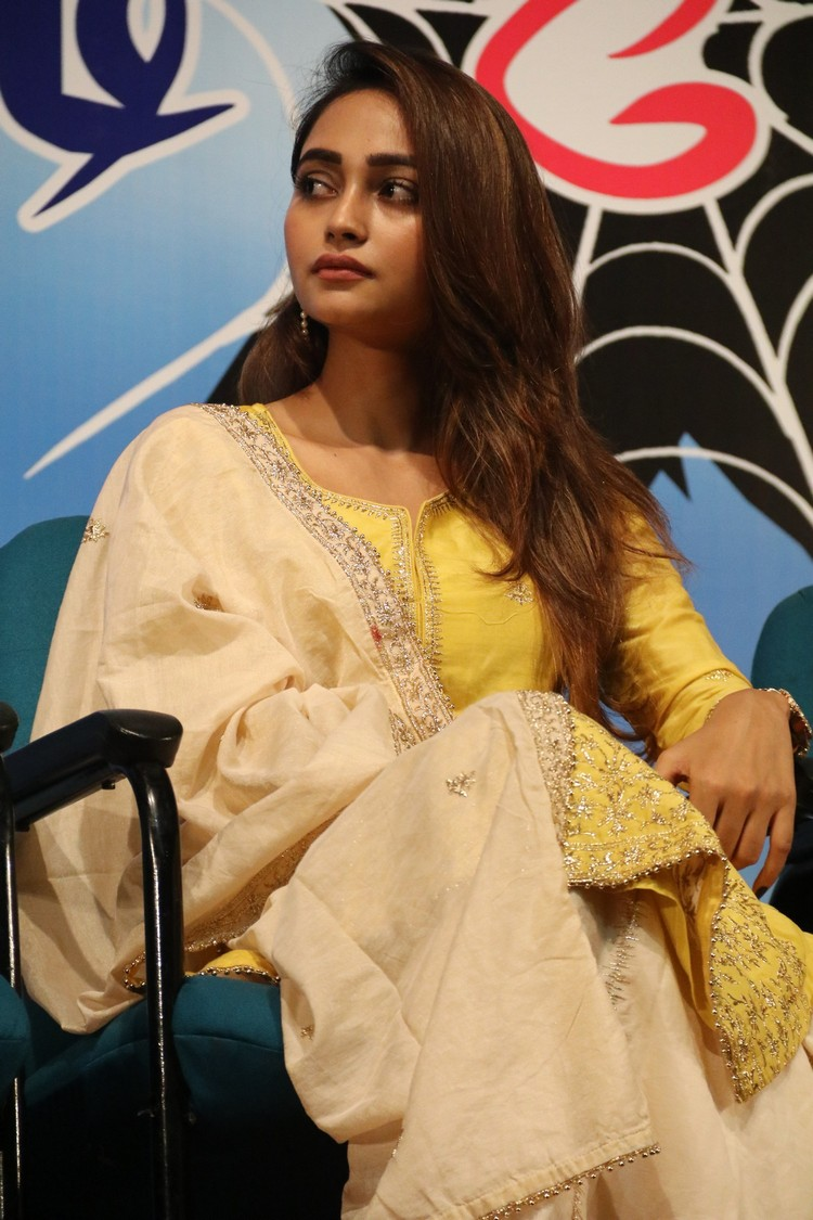 xvideos-press-meet-stills-019