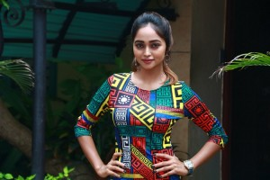 XVideos Press Meet Photos